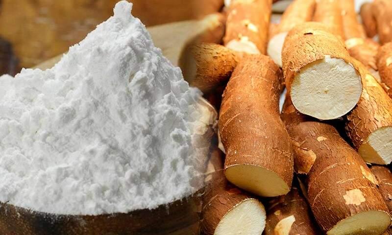 Indústria paranaense produz 70% da Fécula de mandioca do país